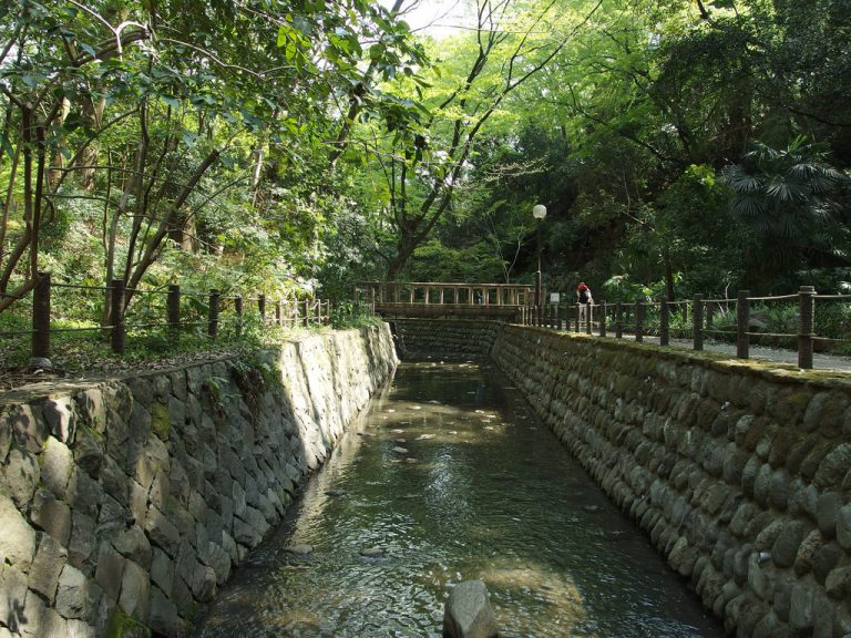 Todoroki Valley Setagaya: Hidden Gem